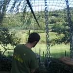 Enriquecimiento ambiental y entrenamiento en El Bosque_Yolcati_0218