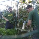 Enriquecimiento ambiental y entrenamiento en El Bosque_Yolcati_0224