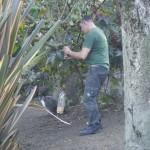 Enriquecimiento ambiental y entrenamiento en El Bosque_Yolcati_0239