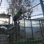 Enriquecimiento ambiental y entrenamiento en El Bosque_Yolcati_0257