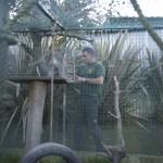 Enriquecimiento ambiental y entrenamiento en El Bosque_Yolcati_0303