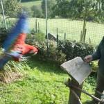 Enriquecimiento ambiental y entrenamiento en El Bosque_Yolcati_0513