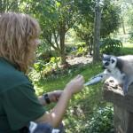 Enriquecimiento ambiental y entrenamiento en El Bosque_Yolcati_0544