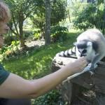 Enriquecimiento ambiental y entrenamiento en El Bosque_Yolcati_0548