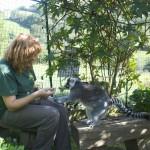 Enriquecimiento ambiental y entrenamiento en El Bosque_Yolcati_0565