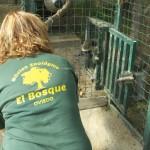 Enriquecimiento ambiental y entrenamiento en El Bosque_Yolcati_0570