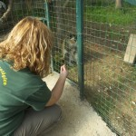 Enriquecimiento ambiental y entrenamiento en El Bosque_Yolcati_0576