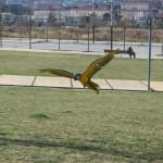 Club de vuelo de Yolcati_0011
