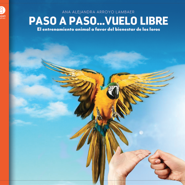 Portada Paso a paso... vuelo libre_Yolcati 2015