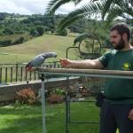 Yolcateando en el Zoo El Bosque_0218