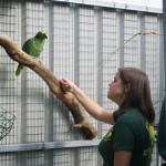 Yolcateando en el Zoo El Bosque_0241