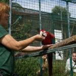 Yolcateando en el Zoo El Bosque_0277