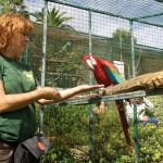 Yolcateando en el Zoo El Bosque_0282