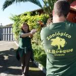 Yolcateando en el Zoo El Bosque_0326 (1)
