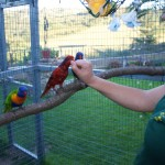 Yolcateando en el Zoo El Bosque_0514