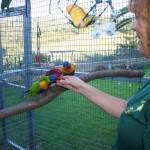 Yolcateando en el Zoo El Bosque_0515