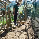 Yolcati y Africam safari en Asturias_0423