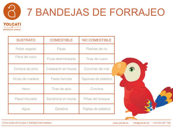 7 Bandejas de forrajeo