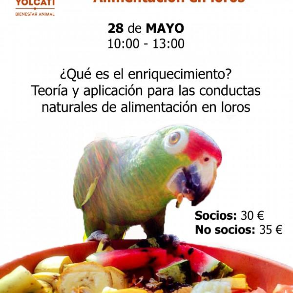 Seminario Enriquecimiento en Loros: Alimentario (1) @ Club Yolcati | Sabadell | Catalunya | España