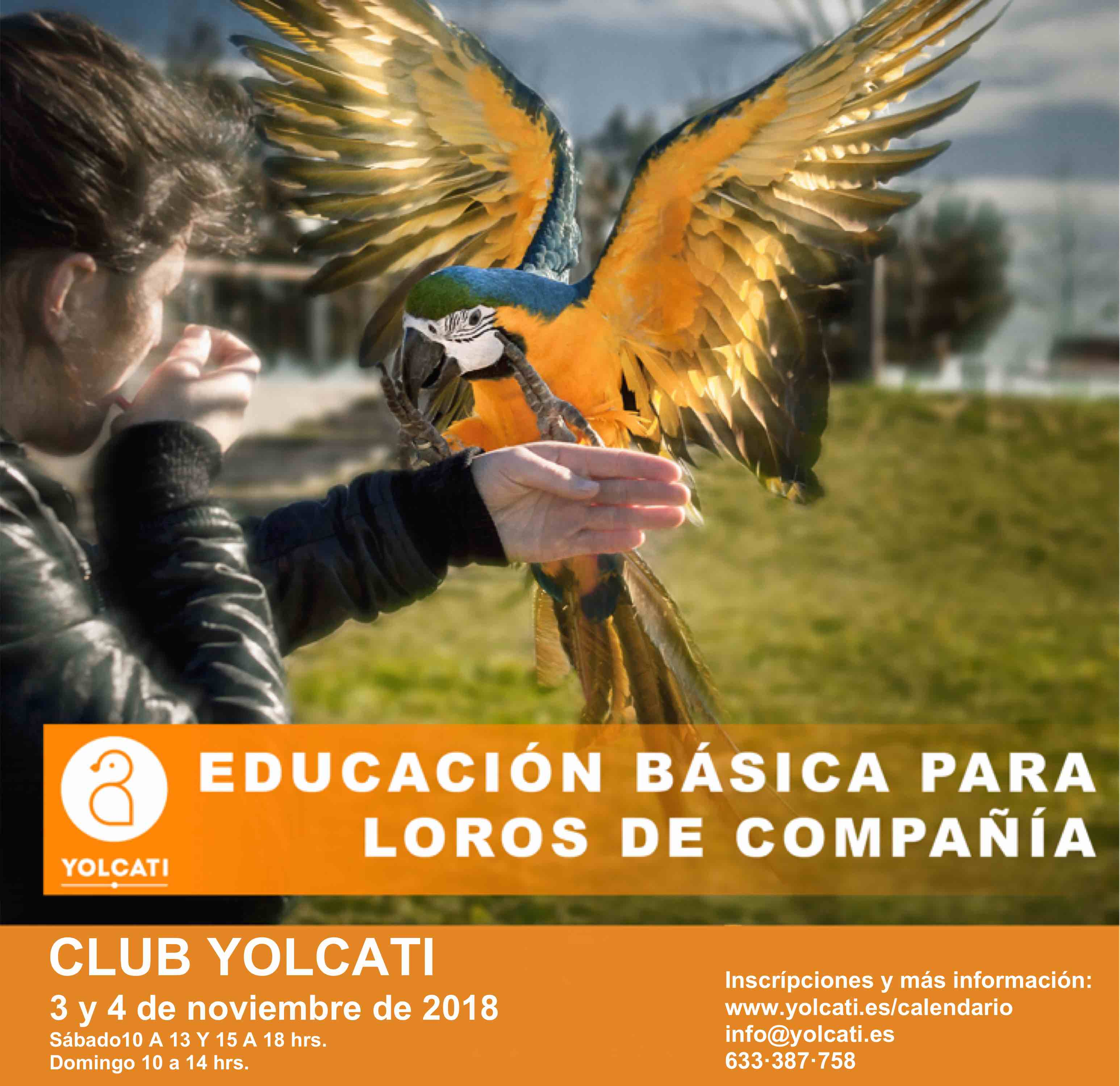 cartel_edu_BCN_2018