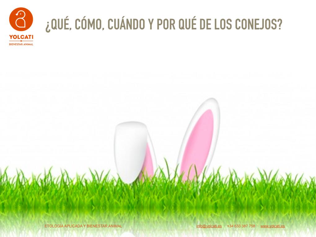 Curso Yolcati_Selvatica_conejos